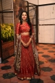 Actress Mrinalini Photos @ Valmiki Pre Release Event