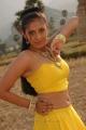 Sindhu Tolani Hot Stills in Murattu Kaalai Movie