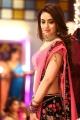 Actress Muskan Sethi Paisa Vasool Movie Images
