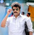 Actor Sundar C in Muthina Kathirika Movie Stills
