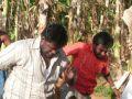 Muthu Pechi Tamil Movie Stills