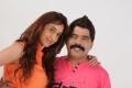 Power Star Srinivasan, Disha in Naalu Perum Romba Nallavanga Tamil Movie Stills