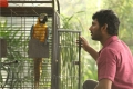 Actor Vishal in Naan Sigappu Manithan Latest Images