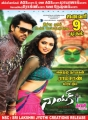Ram Charan, Amala Paul in Nayak Movie Release Posters