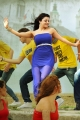 Actress Kajal Agarwal Hot in Naayak New Pics