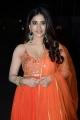 Alludu Adhurs Movie Actress Nabha Natesh New Pictures