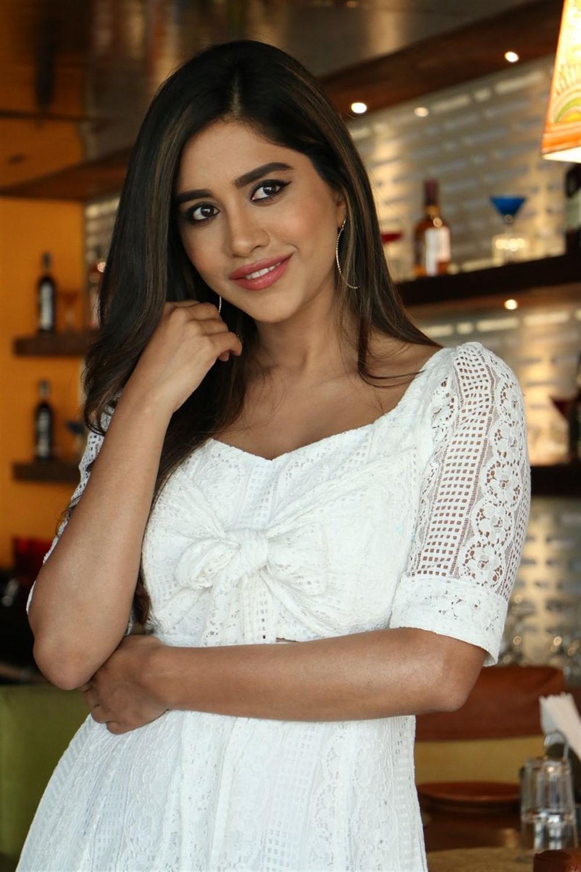 Disco Raja Movie Heroine Nabha Natesh Interview Pictures