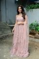 Telugu Actress Nabha Natesh Images