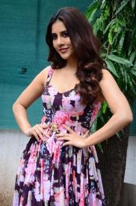 Heroine Nabha Natesh @ Maestro Movie Press Meet Stills