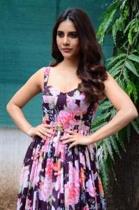Maestro Movie Heroine Nabha Natesh Press Meet Stills