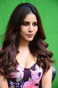 Maestro Movie Actress Nabha Natesh Press Meet Stills