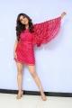 Actress Nabha Natesh Pics @ Disco Raja Movie 3rd Song Release