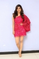 Disco Raja Movie Actress Nabha Natesh Pics