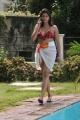 Nadeesha Hemamali Hot Bikini Stills