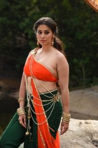 Naga Kanya Movie Actress Lakshmi Rai Photos HD