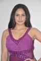 Actress Komal Sharma at Nagaraja Cholan MA MLA Audio Launch Stills