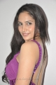 Actress Komal Sharma at Nagaraja Cholan MA MLA Audio Launch Photos