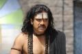 Actor Nagarjuna Photos in Sri Jagadguru Adi Shankara Movie