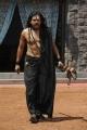 Nagarjuna's First Look as Acharya Chandaludu in Sri Jagadguru Adi Shankara