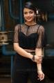 Actress Ashna Zaveri @ Nagesh Thiraiyarangam Press Meet Stills