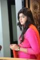Adra Machan Visilu Actress Naina Sarwar Cute Photos