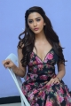 Eshanya Maheshwari @ Namaste Nestama Movie Trailer Launch Stills