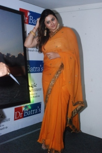 Actress Namitha Hot in Orange Saree Photos