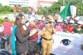 Namitha @ Sankara Nethralaya Walk for Vision 2013 Photos