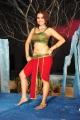 Sheena Hot Spicy Pics in Nandeeswarudu