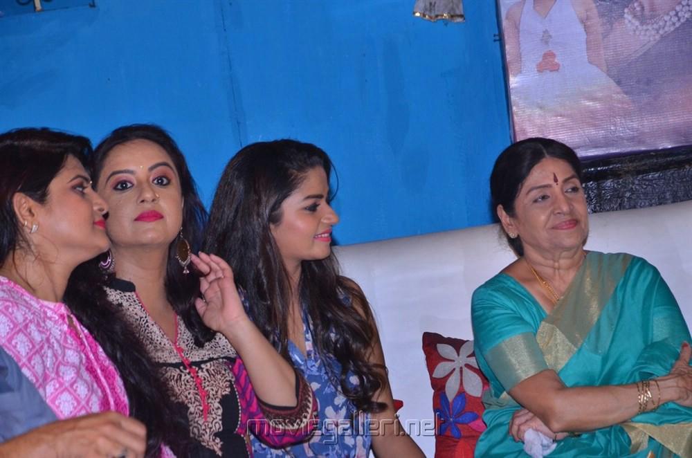 Tv Serial Nandhini Press Meet Stills