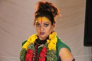Actress Gayatri Jayaraman in Nandini TV Serial Photos