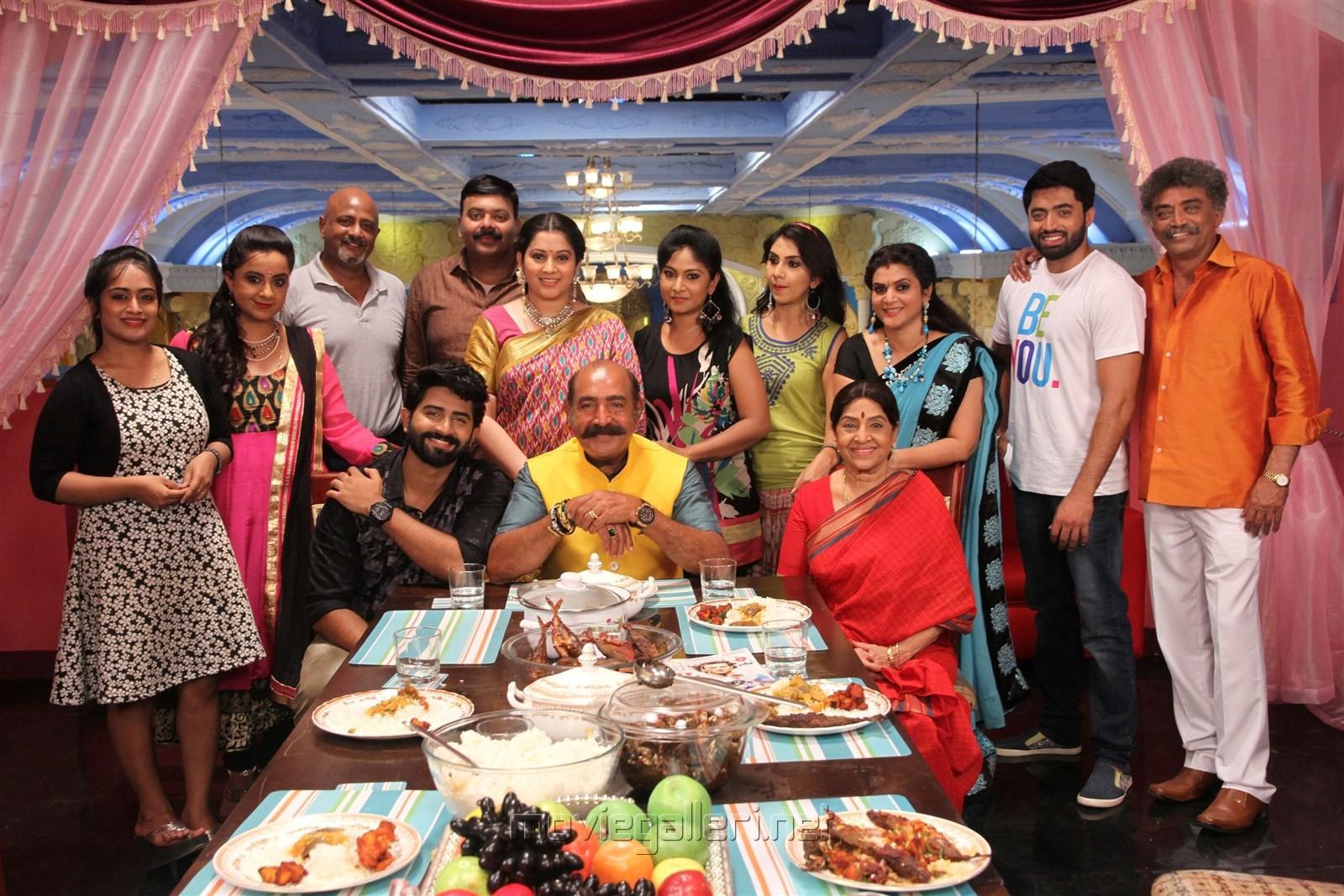 Vijayalakshmi, Rahul Ravi, Vijayakumar, Sachu, Ramesh Pandit, Keerthi, Shabnam, Manjula in Nandini TV Serial Photos
