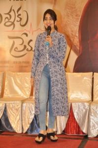 Nannaku Prematho Movie Success Meet Stills