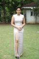 Actress Nikesha Patel @ Narathan Audio Launch Stills