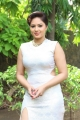 Nikesha Patel @ Narathan Movie Press Meet Stills