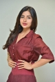Kashmira Pardeshi @ Nartanasala Movie Teaser Launch Stills