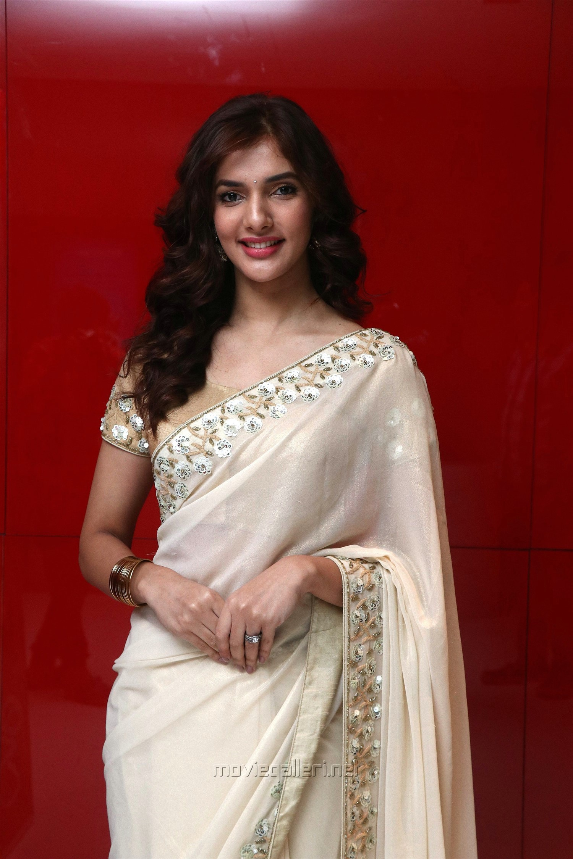 Gypsy Tamil Movie Actress Natasha Singh Photos