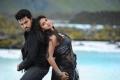 Ram Charan, Amala Paul Hot in Nayak Latest Stills