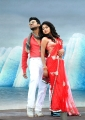 Ram Charan, Amala Paul in Naayak Movie New Stills