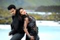 Ram Charan, Amala Paul in Nayak Movie New Stills