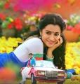 Nayaki Movie Actress Trisha Krishnan Latest Stills