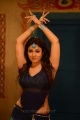 Greeku Veerudu Actress Nayanthara Hot Images