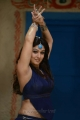Actress Nayanthara Hot Images in Greeku Veerudu Movie
