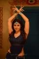 Greeku Veerudu Actress Nayanthara Hot Images