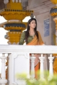 Actress Nayanthara Beautiful Images in Greeku Veerudu Movie