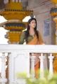 Actress Nayanthara Beautiful Images in Greeku Veerudu Movie