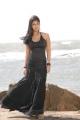 Telugu Actress Nayanthara Hot in Black Dress Stills