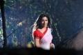 Krishnam Vande Jagadgurum Nayanthara Hot Saree Images