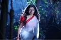 Nayanthara Hot Saree Images in Krishnam Vande Jagadgurum