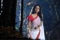 Nayanthara Hot in Saree Images in Krishnam Vande Jagadgurum